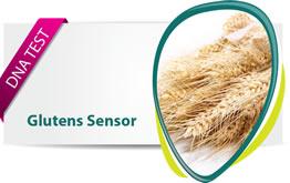 Gluten Sensor