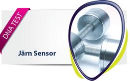 Järn Sensor