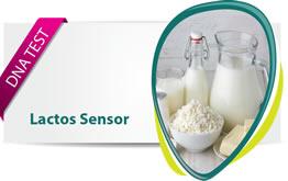 Lactos sensor